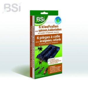 BSI-kleefval-tegen spinnen